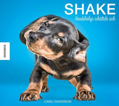 shake-hundebabys-schutteln-sich