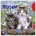 I love Kittens - Ich liebe Kätzchen 2018 - 18-Monatskalender