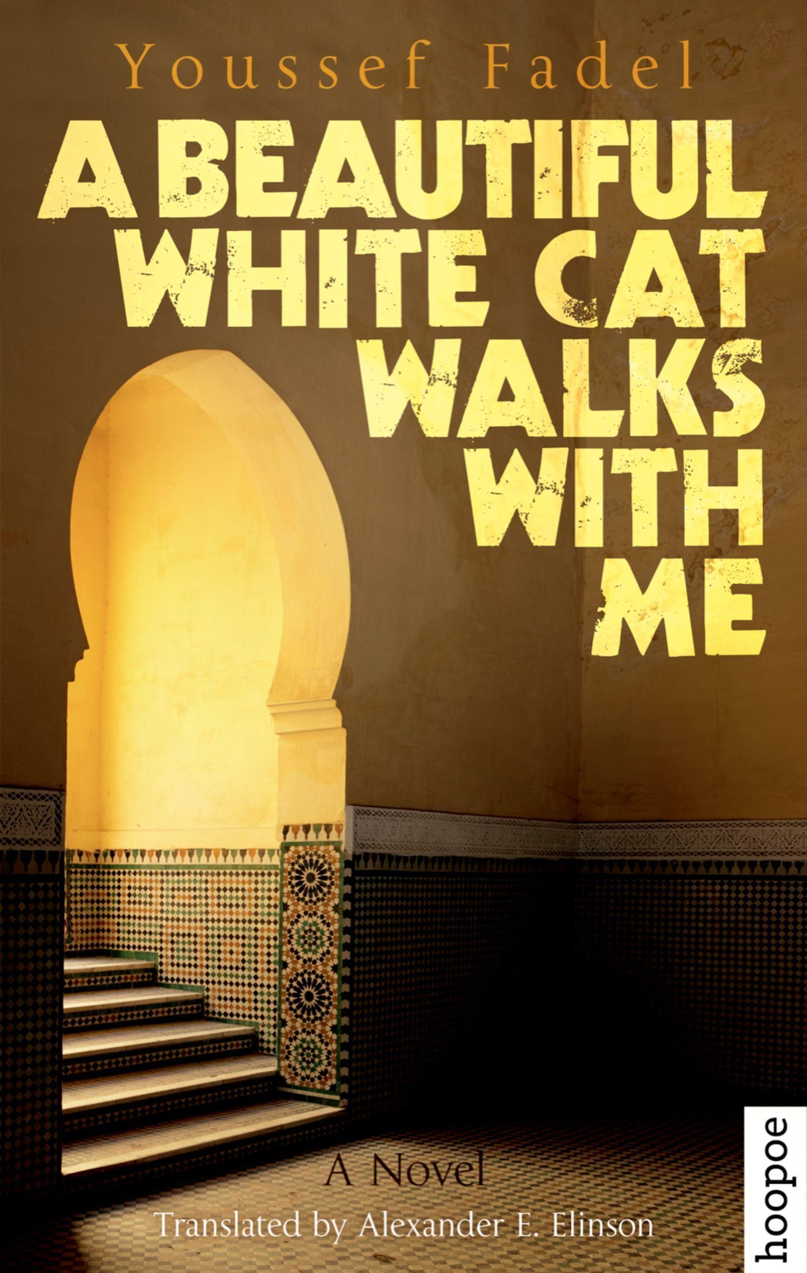 A-Beautiful-White-Cat-Walks-with-Me-Youssef-Fadel