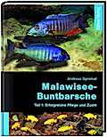 Malawisee-Buntbarsche