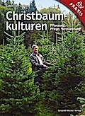 Christbaumkulturen