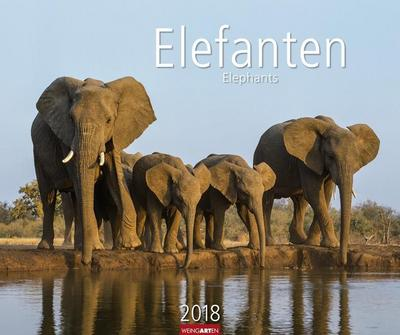 Elefanten - Kalender 2018