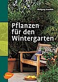 Pflanzen für den Wintergarten