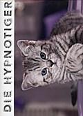 Whiskas Katzenkalender - Kalender 2017