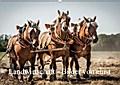 9783665915537 - Alain Gaymard: Landwirtschaft - Bilder von einst (Wandkalender 2018 DIN A2 quer) - Bilder landwirtschaftlicher Szenen unserer Eltern (Monatskalender, 14 Seiten ) - كتاب