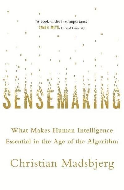 sensemaking-what-makes-human-intelligence-essential-in-the-age-of-the-algorithm