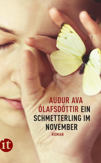 Ein Schmetterling im November: Roman (insel taschenbuch)