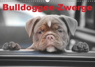 Bulldoggen-Zwerge (Wandkalender 2019 DIN A3 quer)