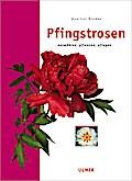 Pfingstrosen: Auswählen, pflanzen, pflegen
