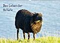 9783665615161 - k. A. kattobello: Das Leben der Schafe (Wandkalender 2018 DIN A3 quer) - Nutztiere (Monatskalender, 14 Seiten ) - كتاب