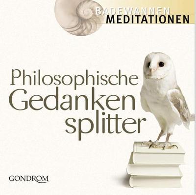 philosophische-gedankensplitter