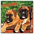 Boxer Puppies - Boxer Welpen 2018 - 18-Monatskalender