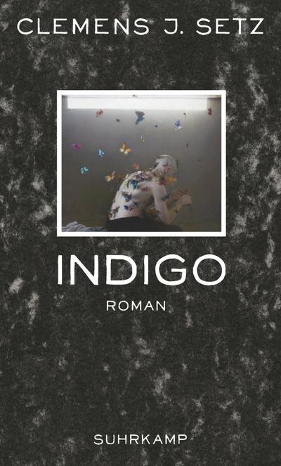 Indigo: Roman