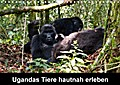 9783665915612 - Johanna Krause: Ugandas Tiere hautnah erleben (Wandkalender 2018 DIN A4 quer) - Ugandas vielfältige Tierwelt, der man in ihrer natürlichen Umgebung begegnen kann. (Monatskalender, 14 Seiten ) - Book