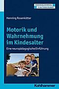 Motorik und Wahrnehmung im Kindesalter, Eine neuropädagogische Einführung. Entwicklung und Bildung in der Frühen Kindheit (Entwicklung Und Bildung in Der Fruehen Kindheit)