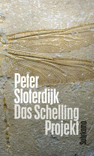 Das Schelling-Projekt: Bericht