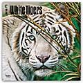 White Tigers - Weiße Tiger 2018 - 18-Monatskalender
