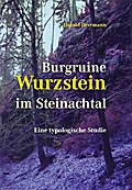 Burgruine Wurzstein im Steinachtal