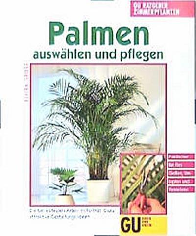 palmen-auswahlen-und-pflegen