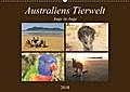 9783665731908 - Martin Wasilewski: Australiens Tierwelt - Auge in AugeAT-Version (Wandkalender 2018 DIN A2 quer) - Reptilien, Beuteltiere und die bunte Vogelwelt von Down Under (Monatskalender, 14 Seiten ) - Livre