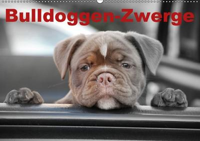 Bulldoggen-Zwerge (Wandkalender 2018 DIN A2 quer)