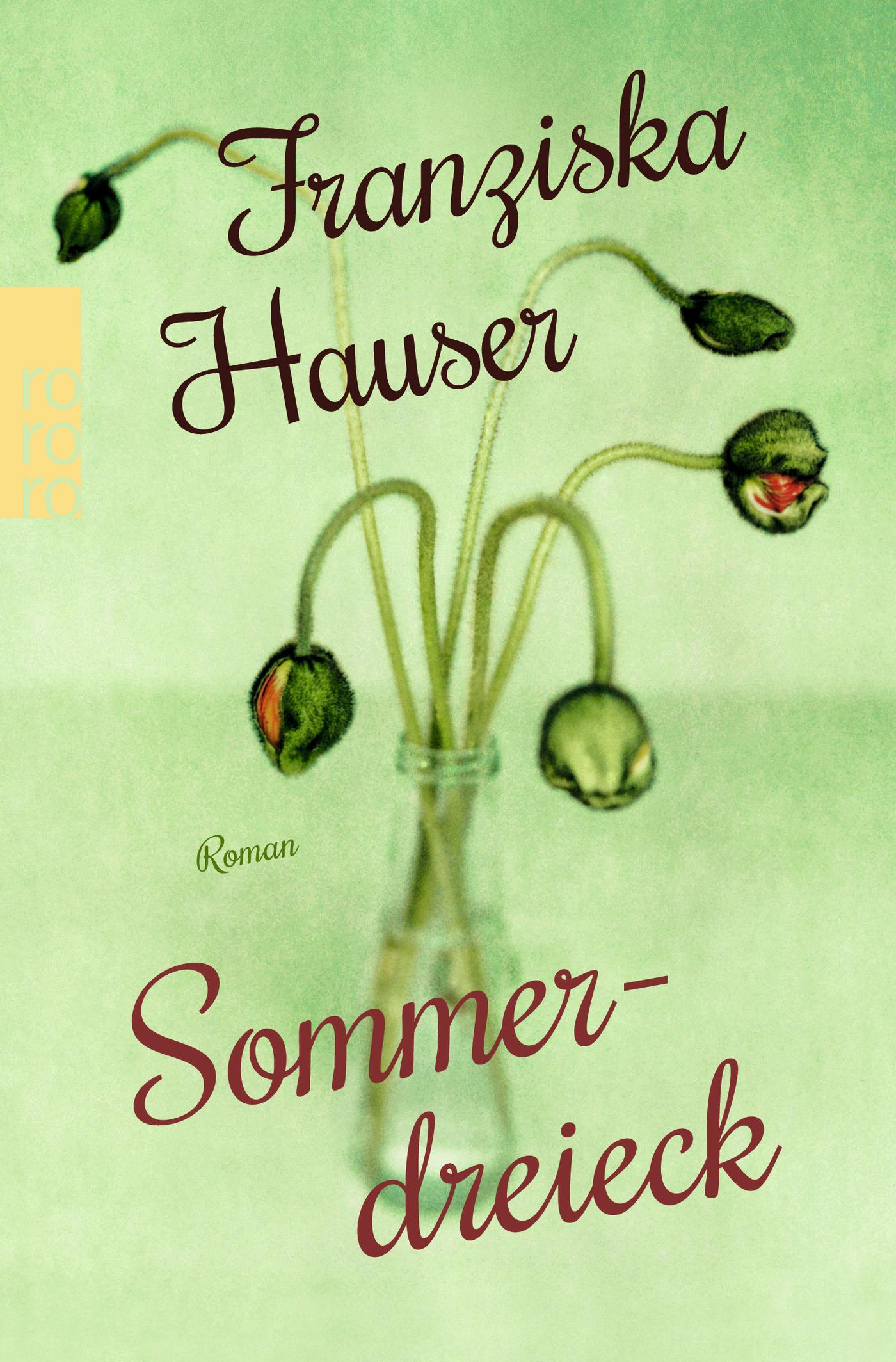 Sommerdreieck-Franziska-Hauser