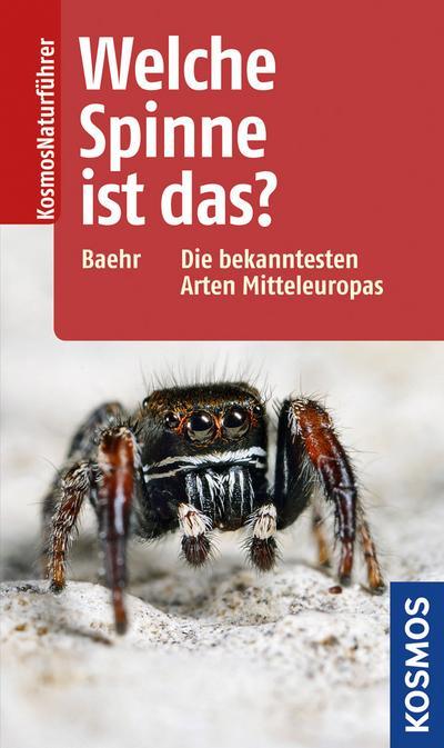 Welche Spinne ist das?: Die bekanntesten Arten Mitteleuropas