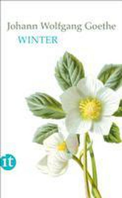 Winter (insel taschenbuch)