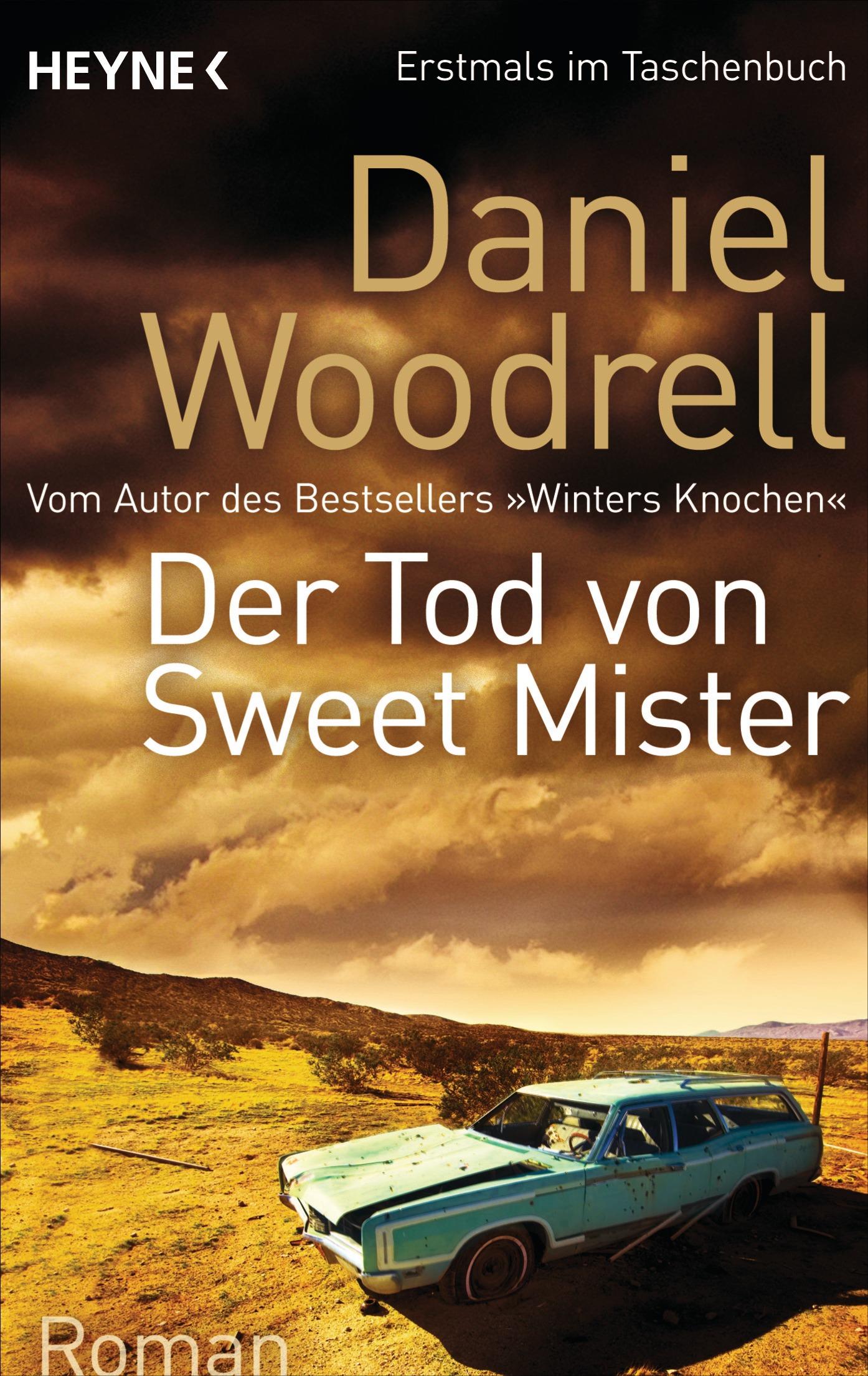 Der-Tod-von-Sweet-Mister-Daniel-Woodrell