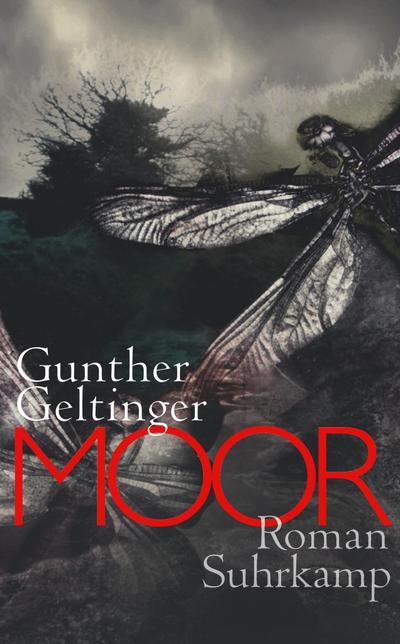 Moor: Roman (suhrkamp taschenbuch)