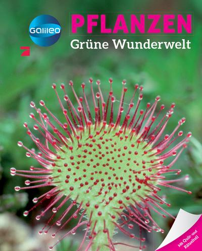 Galileo Wissen: Pflanzen: Grüne Wunderwelt