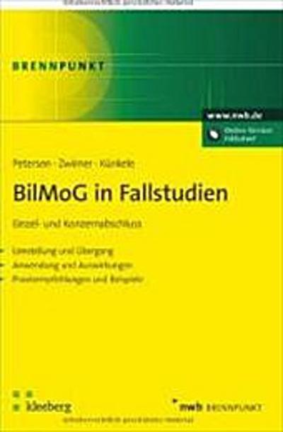 bilmog-in-fallstudien-einzel-und-konzernabschluss-umstellung-und-ubergang-anwendung-und-auswirku