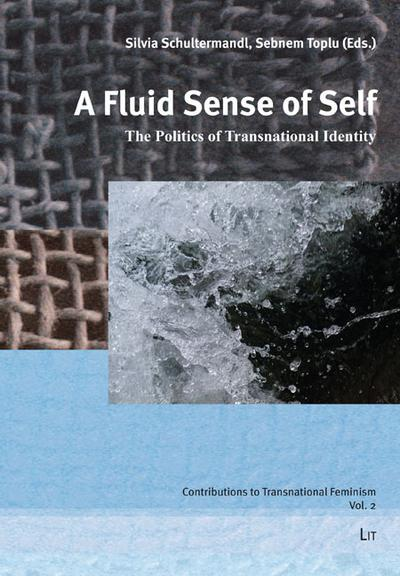 a-fluid-sense-of-self-the-politics-of-transnational-identity-contributions-to-asian-american-liter