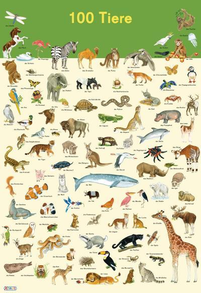 mein-lernposter-100-tiere