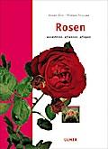 Rosen: Auswählen, pflanzen, pflegen