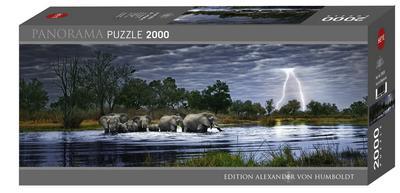 Herd of Elephants 2000 Teile