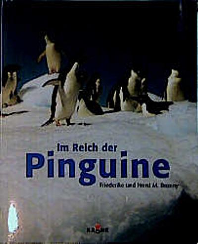 im-reich-der-pinguine