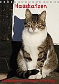 9783665615673 - Antje Lindert-Rottke: Hauskatzen (Tischkalender 2018 DIN A5 hoch) - Stubentiger und Streuner unterwegs (Geburtstagskalender, 14 Seiten ) - کتاب