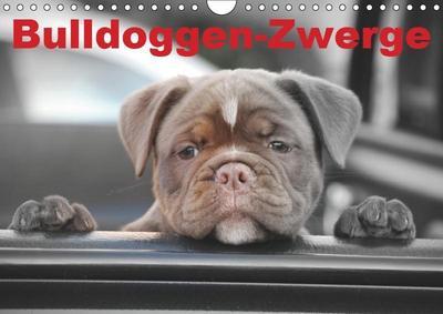 Bulldoggen-Zwerge (Wandkalender 2019 DIN A4 quer)