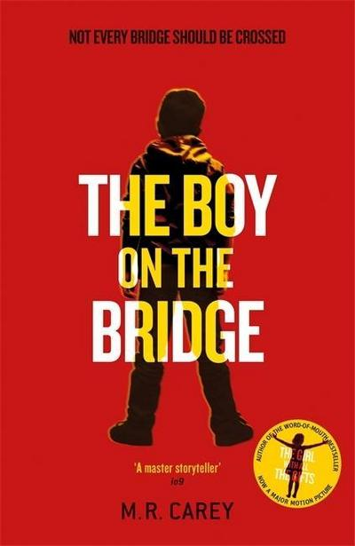 the-boy-on-the-bridge-discover-the-word-of-mouth-phenomenon-the-girl-with-all-the-gifts-series-