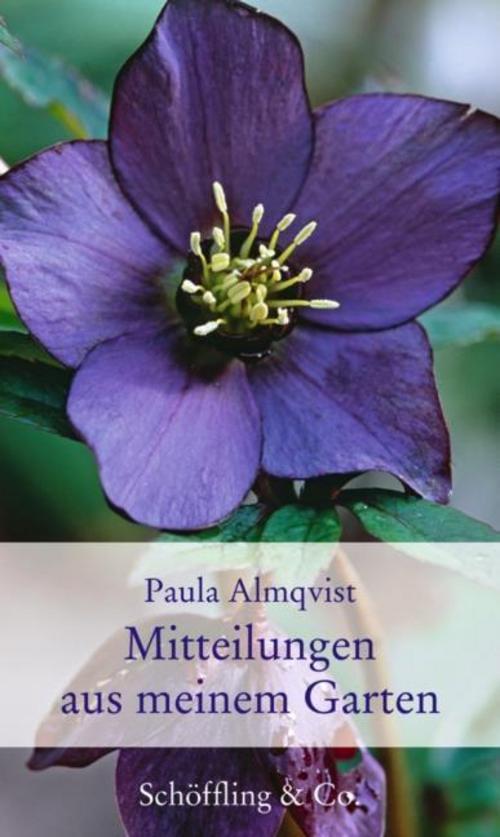 NEU-Mitteilungen-aus-meinem-Garten-Paula-Almqvist-615931