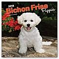 Bichon Frisé Puppies - Gelockter Bichon Welpen 2018 - 18-Monatskalender