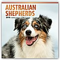 Australian Shepherds - Australische Schäferhunde 2018 - 18-Monatskalender