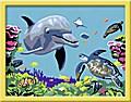 Delfin und Schildkröte. Malen nach Zahlen Ser ...