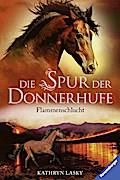 Die Spur der Donnerhufe, Band 1: Flammenschlu ...