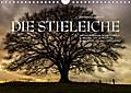 9783665615246 - Ingo Gerlach GDT: Emotionale Momente: Die Stieleiche (Wandkalender 2018 DIN A4 quer) - Ein stolzes Naturdenkmal. Ein stolzer Baum. (Monatskalender, 14 Seiten ) - کتاب