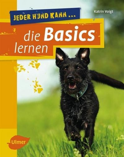 Jeder Hund kann die Basics lernen