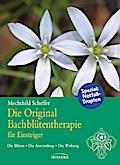 Die Original Bachblütentherapie für Einsteige ...