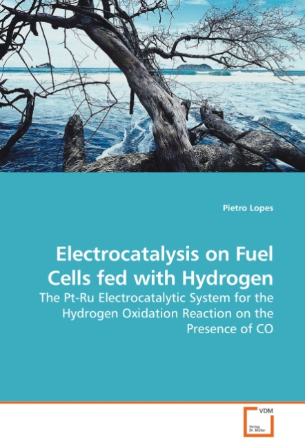 Pietro Lopes / Electrocatalysis on Fuel Cells fed with Hydro ... 9783639223828
