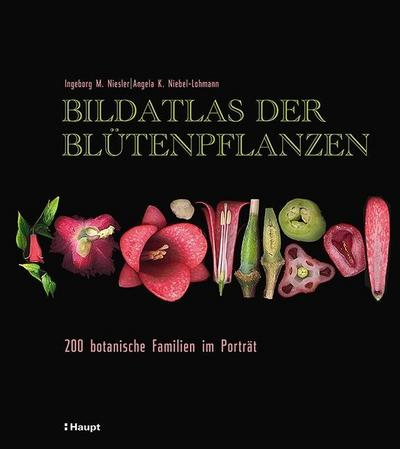 Bildatlas der Blütenpflanzen: 200 botanische Familien im Porträt